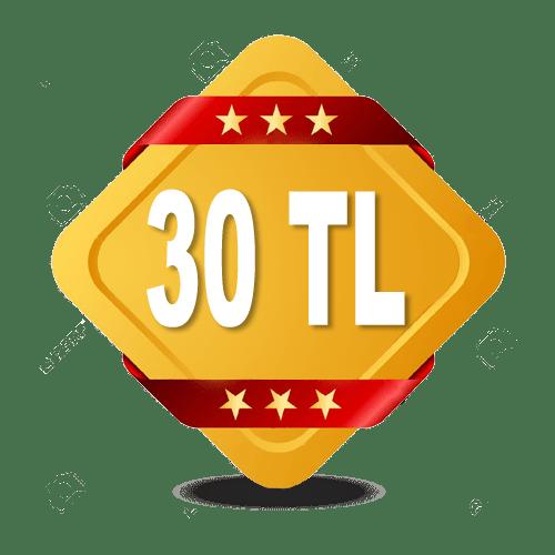 Sigorta Acente Programı 30TL